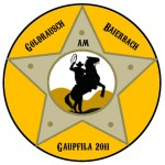 Badge Gaupfila 2011